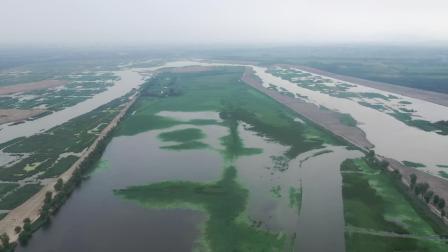 无人机航拍济南章丘白云湖湿地,国家级湿地公园初具规模