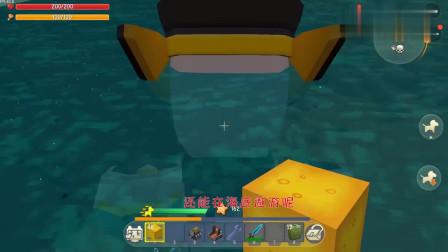 迷你世界:用激活码兑换了一个2级海豹,真的好萌,潜泳速度还快