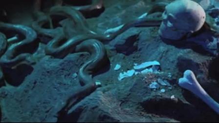 龙门金剑:小伙被扔进坑中,不料里面全是蟒蛇,瞬间变成一堆白骨