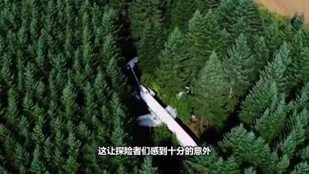 探险者在森林深处发现一架飞机,里面的乘客竟在飞机上住了十年