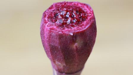 农村长满了这种红果实,却无人问津,殊不知酸酸甜甜,美味又健康,网上卖到了10元一斤