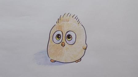 彩铅钢笔画小鸟窦老师教画画