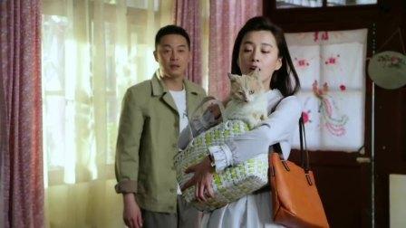 家里有老鼠,媳妇冷不丁带回来一只猫,丈夫都傻眼了!