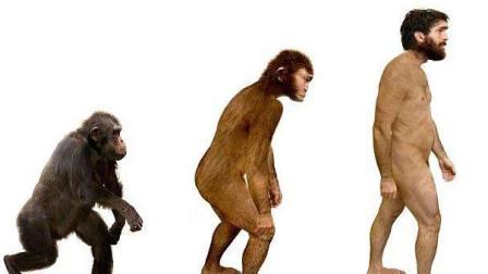 达尔文进化论要被推翻了?一再被质疑,科学家发现多个漏洞!
