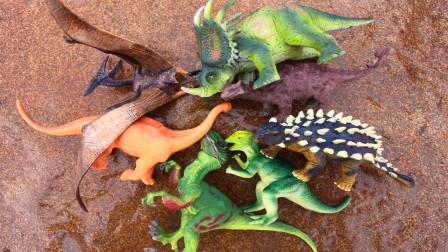 去户外认识戟龙,美甲龙等七种稀有恐龙,小贝识恐龙