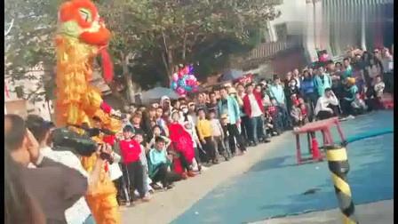 乡村庙会,醒狮表演,没有经过专业训练,却也有模有样