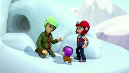 汪汪队立大功第一季:小砾挖雪救出杰克成为汪汪队的新成员