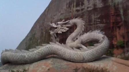 昆仑山发现ldquo龙rdquo的幼崽进食1次能活6年镜头实拍揭开真相