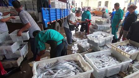 9.1日开海后大量海鲜涌入市场。新鲜的带鱼才几块钱?比吃猪肉还便宜!