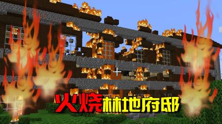 我的世界生存日记49:烧光林地府邸是怎样的景象?唤魔者气的咬牙
