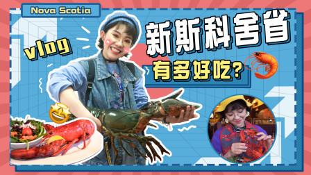 打卡加拿大新斯科舍,享龙虾饕餮大餐