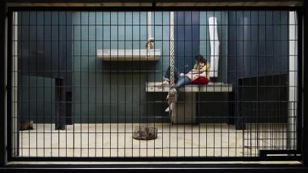 男女被关笼子里,像动物一样供人观赏,一年100万你能坚持吗