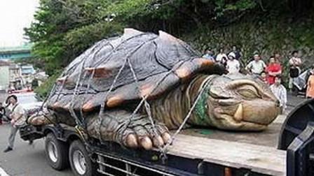 考古队掘开千年古墓,竟发现一只守墓活龟!村民一看脸色大变
