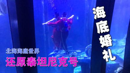 参观北海海底世界全过程 人鲨表演 水下婚礼 海豹表演