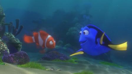 《海底总动员》小丑鱼和多莉一同在大海中寻找玛林的儿子尼莫