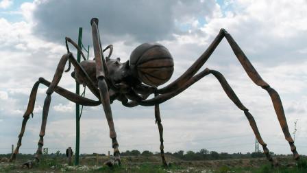 假如把蚂蚁放大一万倍!那么人类会怎么样?蚂蚁会成为地球霸主吗