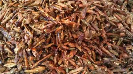 贵州香林苑遵义虾子羊肉粉:香酥辣椒