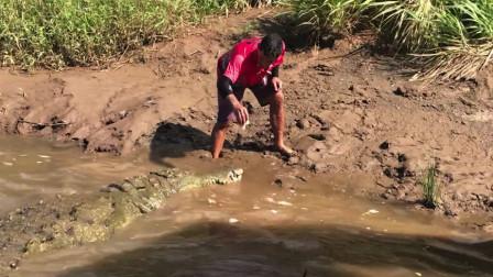 """哥斯达黎加亲眼目睹""""人鳄大战"""" 未曾想到船长下水和巨鳄一起玩耍"""