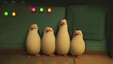 马达加斯加的企鹅:企鹅们被带到威尼斯,遇到了它们最大的敌人