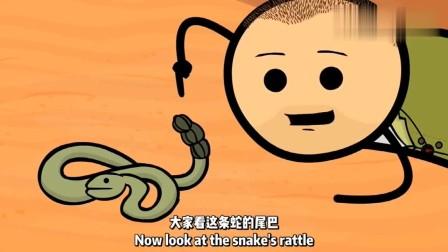 """氰化欢乐秀:贝爷你确定这叫""""摇摇蛇""""?学以致用太厉害了!"""