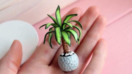 微世界DIY:盆栽微型植物