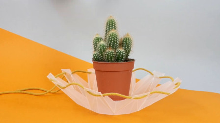 最廉价的自动浇水花盆,用回收材料做成,是懒人种花的福音