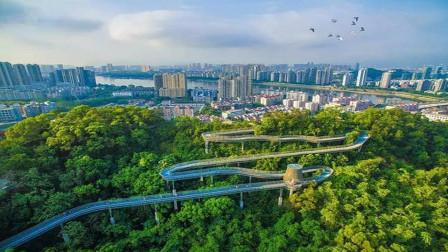 """中国最""""绿""""的省份,森林覆盖率达66.8%,富裕水平超广东!"""