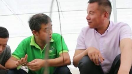 安徽省家庭农场总数达到10.5万家 每日新闻报 20190908 高清版