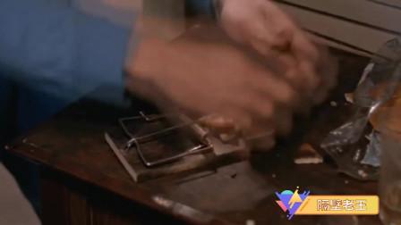 邪完再邪:男子打开房门一堆耗子在桌子上吃饼干