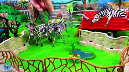 野生动物玩具,红色拖车运来犀牛三角龙,山洞里狮子老虎豹子,草坪上斑马在吃草,亲子互动悠悠玩具城