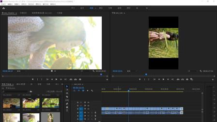 1. pr/ae短视频教程 唯美风格短视频-基础剪辑教程