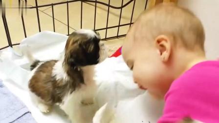 狗狗凑近宝贝,小可爱趴下求亲亲,太可爱了
