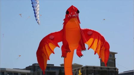 """澳大利亚版潍坊风筝节,这里的""""动物""""都飞在天上?"""