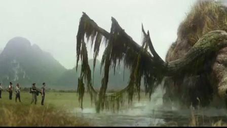 金刚骷髅岛岛上最安全的食草动物也把他们吓得半死