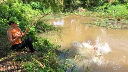 农村姑娘河边钓鱼,大鱼小鱼纷纷上钩,什么地方的河能有这么富饶