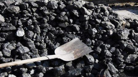 世界中存在碳循环,为何要说石油煤炭不可再生呢?今天算长见识了