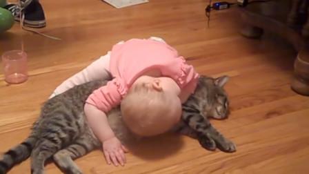 1岁萌娃肆意欺负猫咪,在猫身上抓来抓去,猫咪的反应太暖了