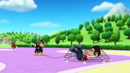 汪汪队:小猴子抢走了香蕉,阿奇没有抓住它,而是抓到了莱德!