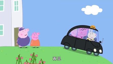 猪奶奶叫了出租车,兔小姐要送她去机场,佩奇也想去送奶奶!