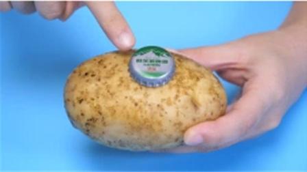 在土豆上放一个啤酒瓶盖,没想到用途这么棒,可惜知道的人不多
