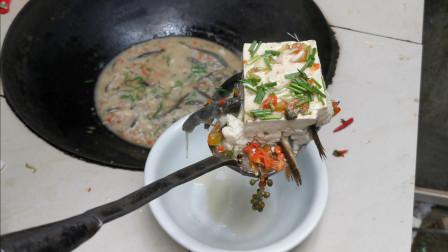 农村大叔测试泥鳅钻豆腐,竟然成功了,这是真的吧?