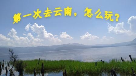 【云南自由行攻略】2019年8月,暑假向,旺季,8天7夜,散漫游