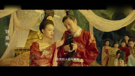 妖猫传:极乐之宴白衣少年丹龙白龙上演绝美幻术,太神奇了