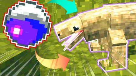 我的世界新侏罗纪公园181:最神奇的生物捕捉球,能抓一切动物!