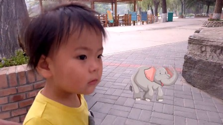 北京野生动物园里喂大象长颈鹿 和狐猴一起在马达加斯加漫步