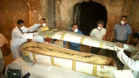 埃及金字塔内发现密室,木乃伊内躺的不是人类?疑似埃及神兽