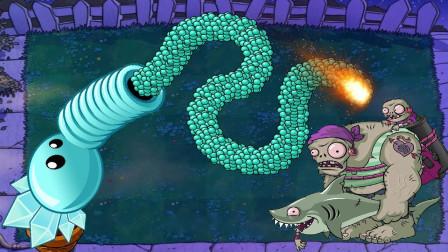 巨人鲨鱼海盗在夜晚突袭僵尸,冰霜豌豆:正好练练手