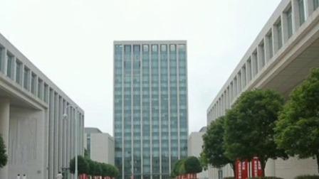 央视新闻联播 2019 上海自贸区临港新片区首批项目签约