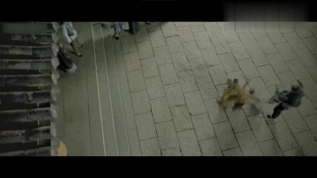 电影片段:北方大汉挨个踢馆,结果遇上了广东十虎黄澄可!