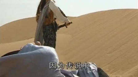 四大绝顶高手沙漠围攻一个小姑娘,女孩剑法登峰造极斩杀四大高手